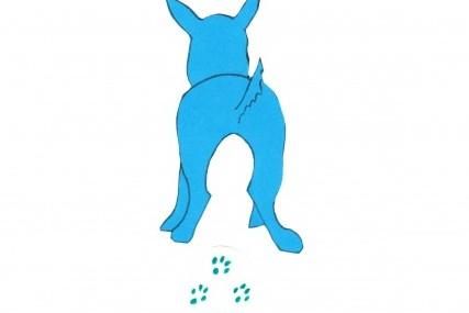 Niebieski buldog francuski – błękitny gen