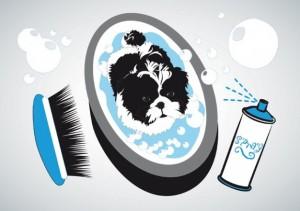 small-dog-bath_21-631