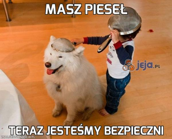 95950_masz-piesel