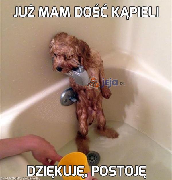 Źródło: obrazki.jeja.pl